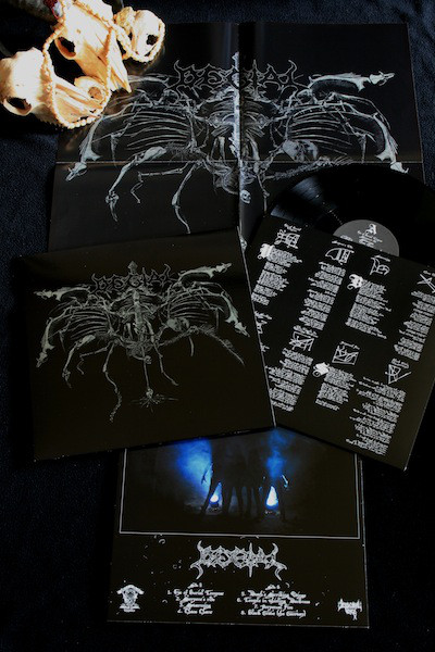 """Degial – Death's Striking Wings 12"""""""