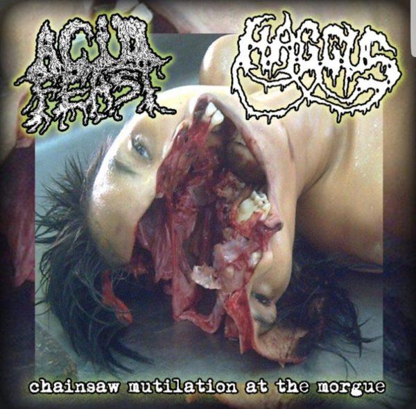 """Haggus / Acid Feast 7"""" split"""