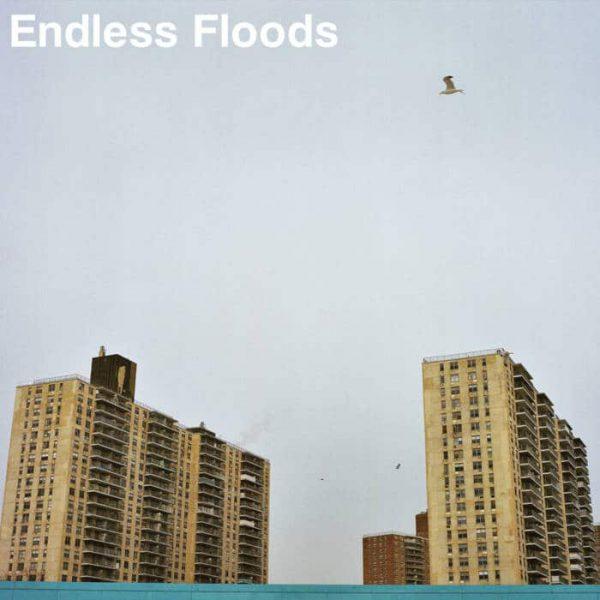 """Endless Floods – II 12"""" (Clear Vinyl)"""